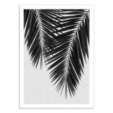 PALM LEAF PART 3 BLACK AND WHITE – Affiche d'art 50 x 70 cm