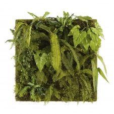 Tableau végétal plantes artificielles 100×100