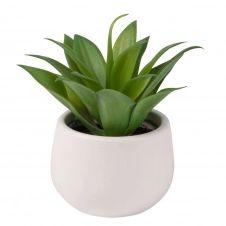 Plante artificielle Aloe Vera et pot en céramique blanche