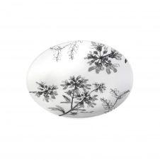 Assiette plate en porcelaine décorée gris 26.5 cm – Lot de 6