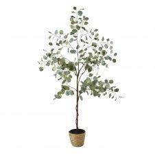 Eucalyptus artificiel et pot tressé H176