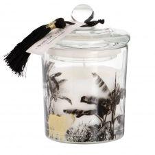 Bougie parfumée en verre imprimé jungle