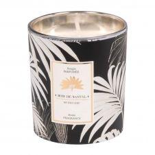 Bougie parfumée en verre noir et doré imprimé palmiers blancs